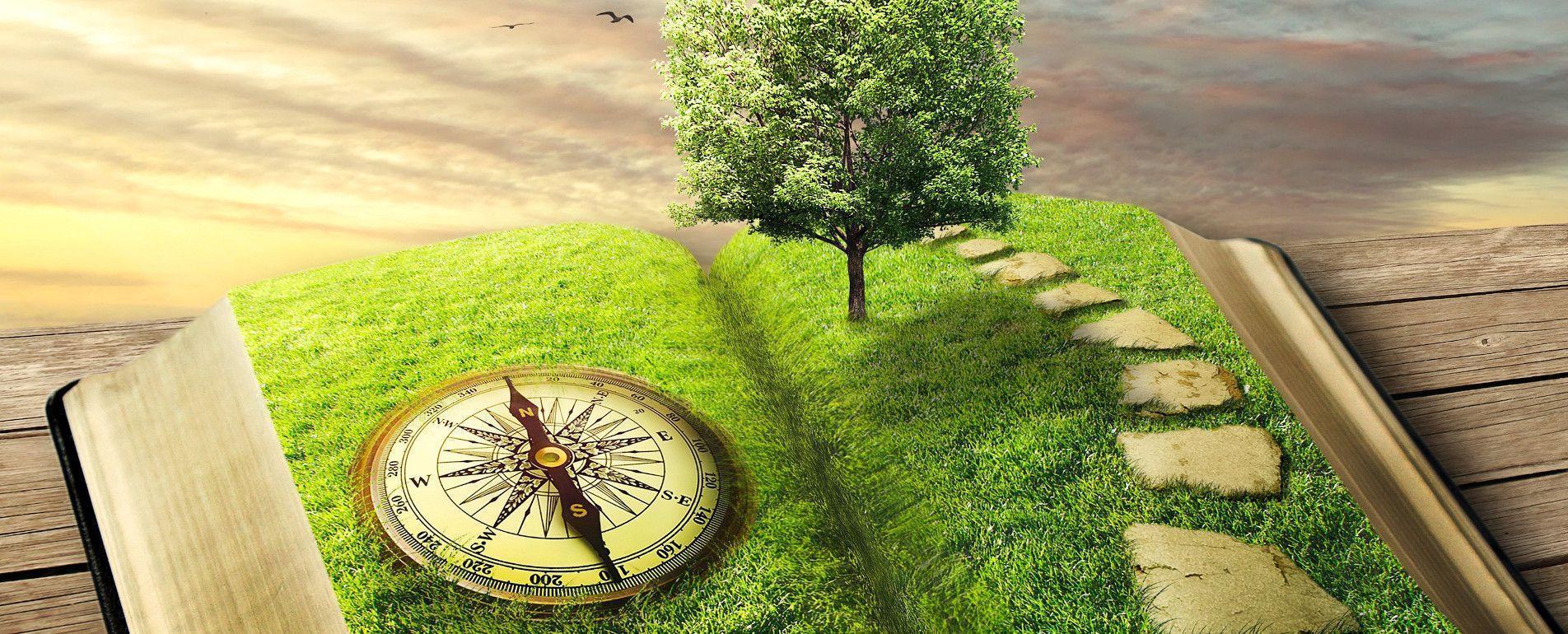 Un livre ouvert contentant une boussole et un arbre